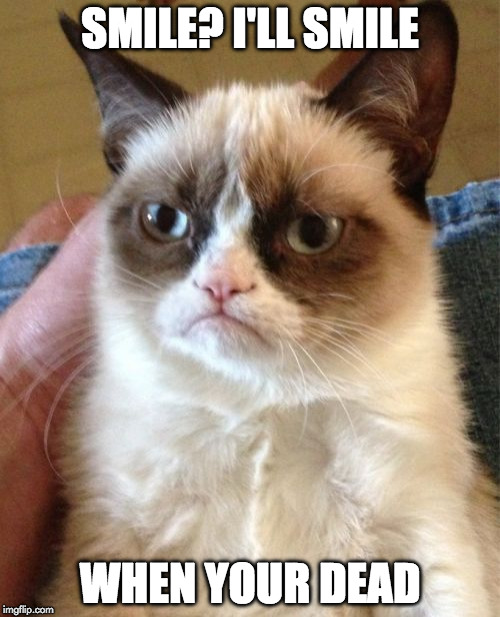 Grumpy Cat Meme | SMILE? I'LL SMILE WHEN YOUR DEAD | image tagged in memes,grumpy cat | made w/ Imgflip meme maker