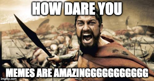 Sparta Leonidas Meme | HOW DARE YOU MEMES ARE AMAZINGGGGGGGGGGG | image tagged in memes,sparta leonidas | made w/ Imgflip meme maker