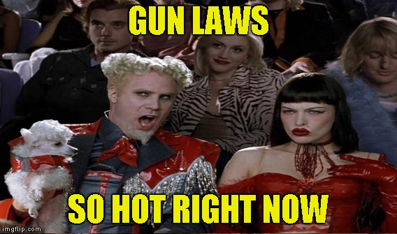 GUN LAWS SO HOT RIGHT NOW | made w/ Imgflip meme maker