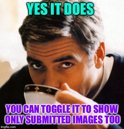 YES IT DOES YOU CAN TOGGLE IT TO SHOW ONLY SUBMITTED IMAGES TOO | made w/ Imgflip meme maker
