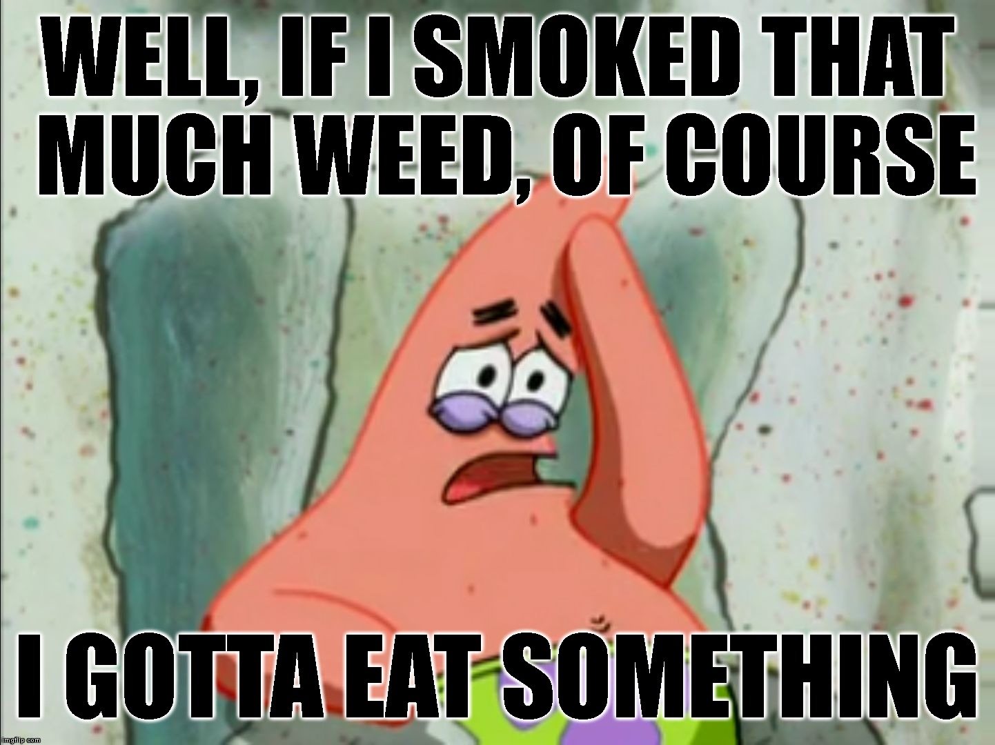 WELL, IF I SMOKED THAT MUCH WEED, OF COURSE I GOTTA EAT SOMETHING | made w/ Imgflip meme maker