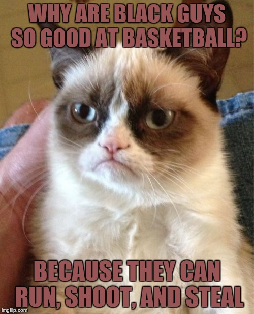 im not racist | WHY ARE BLACK GUYS SO GOOD AT BASKETBALL? BECAUSE THEY CAN RUN, SHOOT, AND STEAL | image tagged in memes,grumpy cat,funny,black,not racist | made w/ Imgflip meme maker
