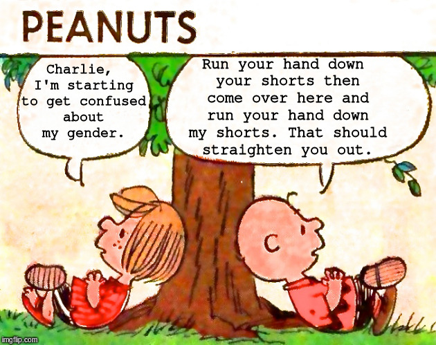 Peanuts Charlie Brown Peppermint Patty | Charlie, I'm starting to get confused about my gender. Run your hand down your shorts then come over here and run your hand down my shorts.  | image tagged in peanuts charlie brown peppermint patty | made w/ Imgflip meme maker