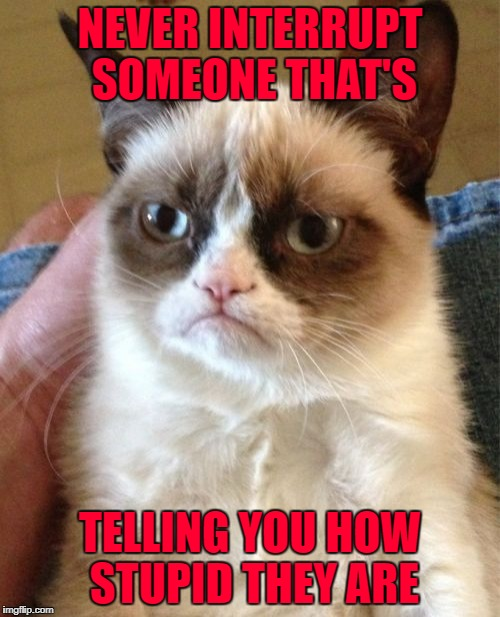 I always take their word for it!!! | NEVER INTERRUPT SOMEONE THAT'S TELLING YOU HOW STUPID THEY ARE | image tagged in memes,grumpy cat,take their word for it,funny,cats,animals | made w/ Imgflip meme maker