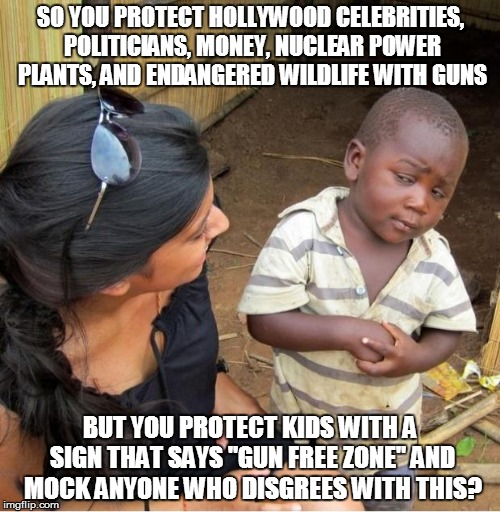 Skeptical third world kid | SO YOU PROTECT HOLLYWOOD CELEBRITIES, POLITICIANS, MONEY, NUCLEAR POWER PLANTS, AND ENDANGERED WILDLIFE WITH GUNS BUT YOU PROTECT KIDS WITH  | image tagged in skeptical third world kid | made w/ Imgflip meme maker