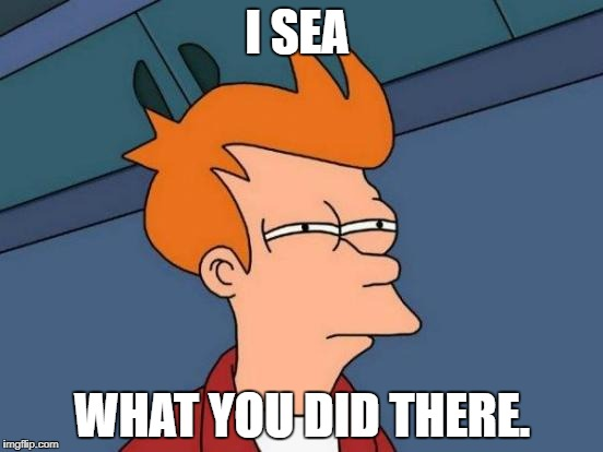 Futurama Fry Meme | I SEA WHAT YOU DID THERE. | image tagged in memes,futurama fry | made w/ Imgflip meme maker