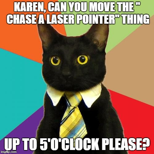 "Business Cat | KAREN, CAN YOU MOVE THE "" CHASE A LASER POINTER"" THING UP TO 5'O'CLOCK PLEASE? 