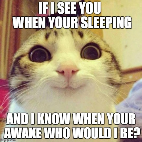 Smiling Cat Meme | IF I SEE YOU  WHEN YOUR SLEEPING AND I KNOW WHEN YOUR AWAKE WHO WOULD I BE? | image tagged in memes,smiling cat | made w/ Imgflip meme maker