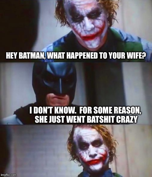 She should've stayed out of the bat cave  | HEY BATMAN, WHAT HAPPENED TO YOUR WIFE? I DON'T KNOW.  FOR SOME REASON, SHE JUST WENT BATSHIT CRAZY | image tagged in batman,the joker,bad joke,funny meme | made w/ Imgflip meme maker