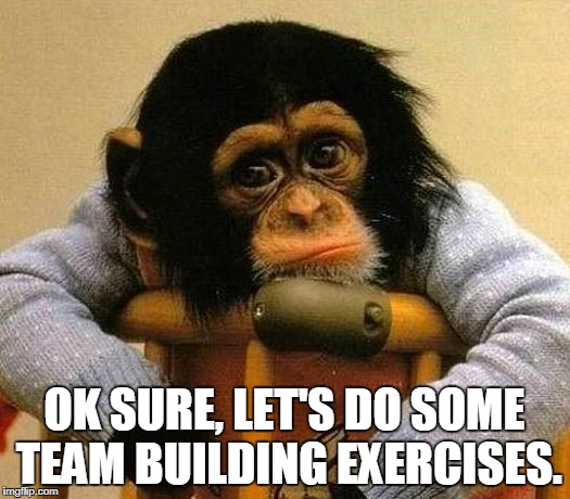 Team Building Exercises | OK SURE, LET'S DO SOME TEAM BUILDING EXERCISES. | image tagged in teamwork | made w/ Imgflip meme maker