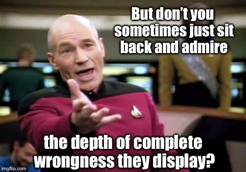 Picard Wtf Meme | But don't you sometimes just sit back and admire the depth of complete wrongness they display? | image tagged in memes,picard wtf | made w/ Imgflip meme maker