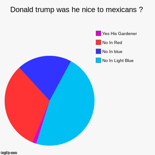 Donald trump was he nice to mexicans ? | No In Light Blue, No In blue, No In Red, Yes His Gardener | image tagged in funny,pie charts | made w/ Imgflip chart maker