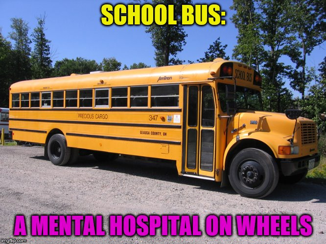 school bus | SCHOOL BUS: A MENTAL HOSPITAL ON WHEELS | image tagged in school bus | made w/ Imgflip meme maker