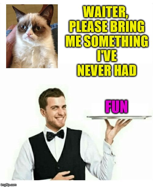 hybrid meme | WAITER, PLEASE BRING ME SOMETHING I'VE NEVER HAD FUN | image tagged in waiter,grumpy cat | made w/ Imgflip meme maker