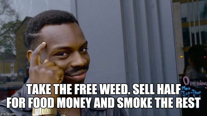 Roll Safe Think About It Meme | TAKE THE FREE WEED. SELL HALF FOR FOOD MONEY AND SMOKE THE REST | image tagged in memes,roll safe think about it | made w/ Imgflip meme maker