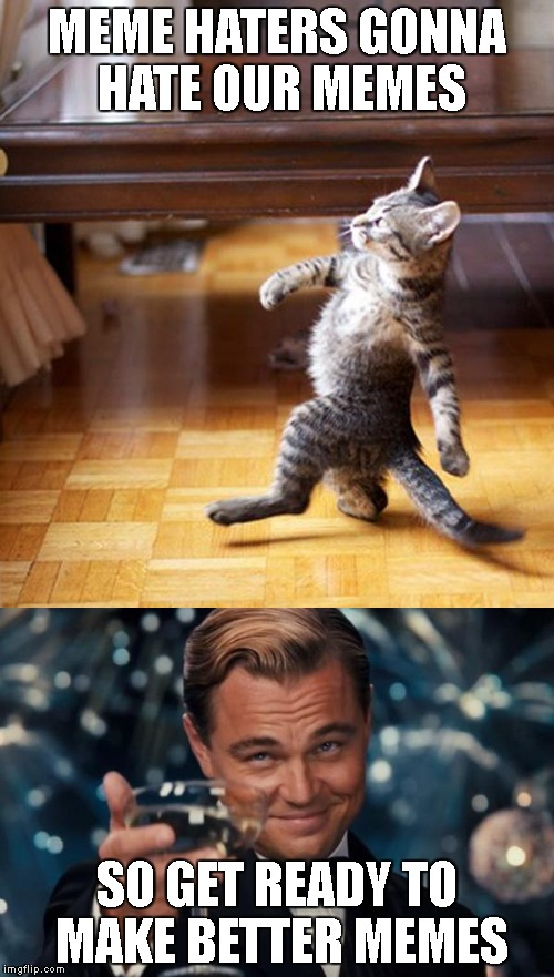 hopefully | MEME HATERS GONNA HATE OUR MEMES SO GET READY TO MAKE BETTER MEMES | image tagged in kitten,memes,funny,latest,leonardo dicaprio cheers,cat | made w/ Imgflip meme maker