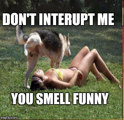 DON'T INTERUPT ME YOU SMELL FUNNY | made w/ Imgflip meme maker