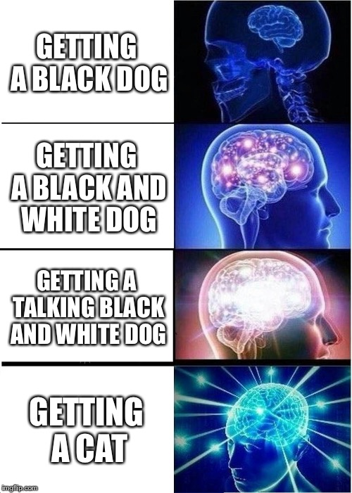 Expanding Brain Meme | GETTING A BLACK DOG GETTING A BLACK AND WHITE DOG GETTING A TALKING BLACK AND WHITE DOG GETTING A CAT | image tagged in memes,expanding brain | made w/ Imgflip meme maker