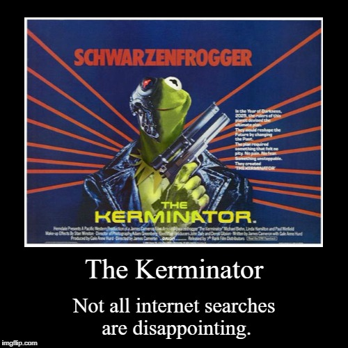 The Kerminator | Not all internet searches are disappointing. | image tagged in funny,demotivationals | made w/ Imgflip demotivational maker