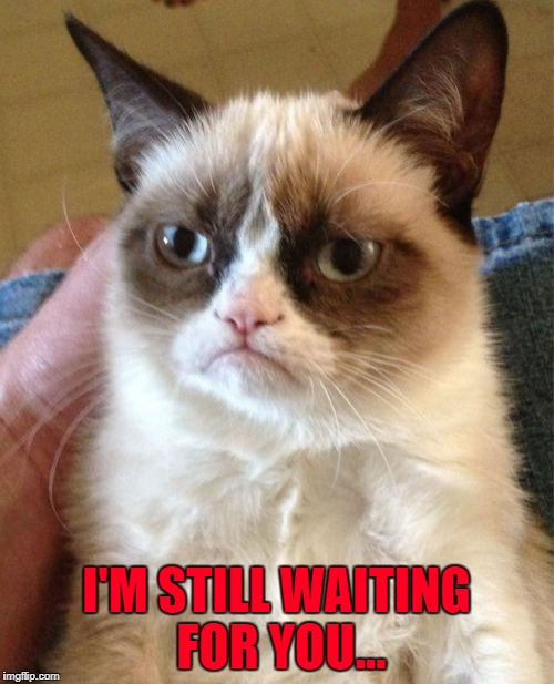 Grumpy Cat Meme | I'M STILL WAITING FOR YOU... | image tagged in memes,grumpy cat | made w/ Imgflip meme maker