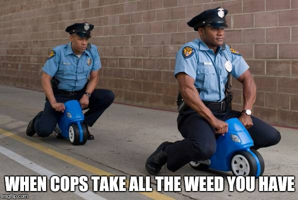 High cops | WHEN COPS TAKE ALL THE WEED YOU HAVE | image tagged in cops,too damn high,high,police,police car,weed | made w/ Imgflip meme maker