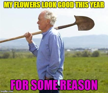 MY FLOWERS LOOK GOOD THIS YEAR FOR SOME REASON | made w/ Imgflip meme maker