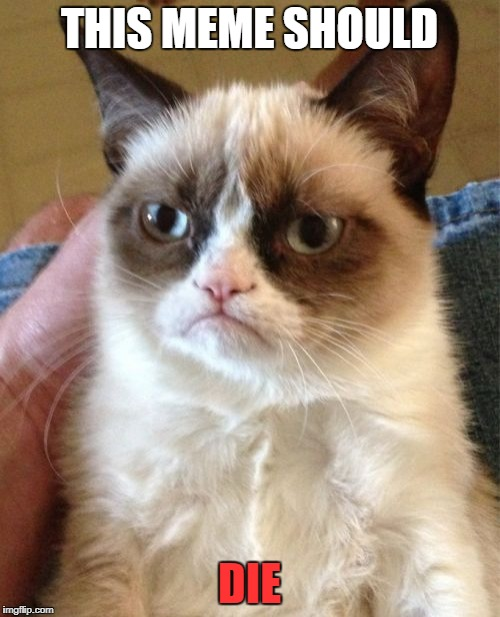 Grumpy Cat Meme | THIS MEME SHOULD DIE | image tagged in memes,grumpy cat | made w/ Imgflip meme maker