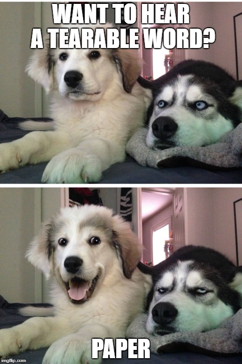Bad pun dogs | WANT TO HEAR A TEARABLE WORD? PAPER | image tagged in bad pun dogs | made w/ Imgflip meme maker