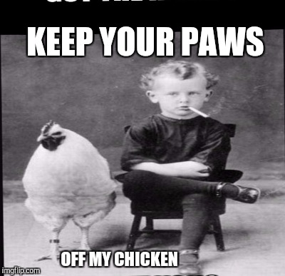 KEEP YOUR PAWS OFF MY CHICKEN | made w/ Imgflip meme maker