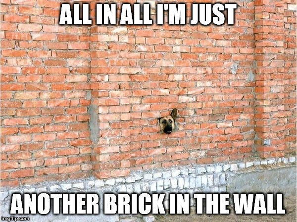 Bark Side of the Moon | ALL IN ALL I'M JUST ANOTHER BRICK IN THE WALL | image tagged in kenj,another brick in the wall,pink floyd,doggy | made w/ Imgflip meme maker
