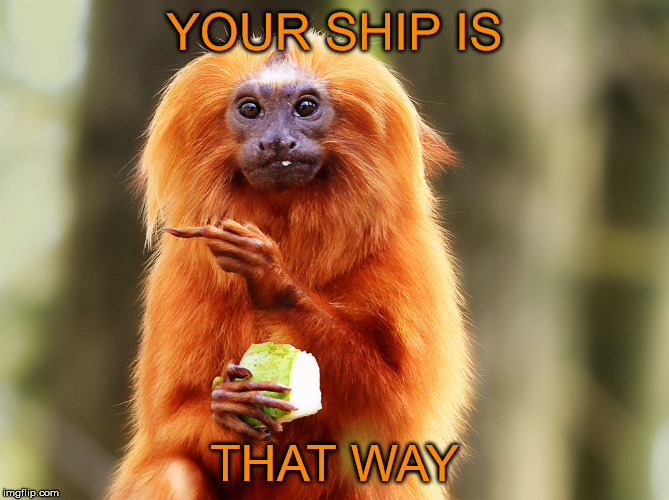 YOUR SHIP IS THAT WAY | made w/ Imgflip meme maker