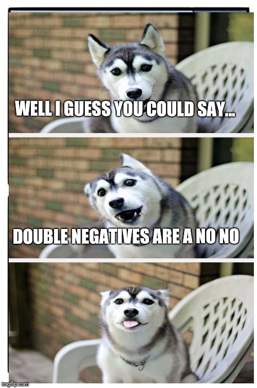 WELL I GUESS YOU COULD SAY... DOUBLE NEGATIVES ARE A NO NO | made w/ Imgflip meme maker