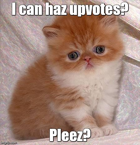 sad kitty | I can haz upvotes? Pleez? | image tagged in sad kitty | made w/ Imgflip meme maker