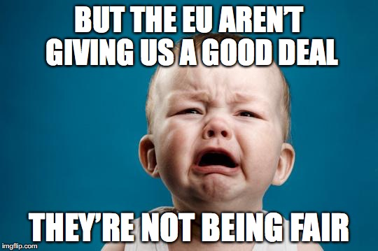 CRYING BABY | BUT THE EU AREN'T GIVING US A GOOD DEAL THEY'RE NOT BEING FAIR | image tagged in crying baby | made w/ Imgflip meme maker
