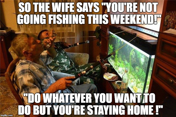 "Home spun fishing trip | SO THE WIFE SAYS ""YOU'RE NOT GOING FISHING THIS WEEKEND!"" ""DO WHATEVER YOU WANT TO DO BUT YOU'RE STAYING HOME !"" 