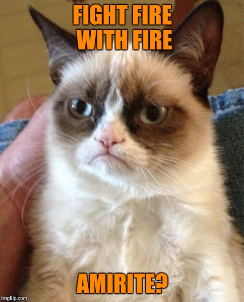 Grumpy Cat Meme | FIGHT FIRE WITH FIRE AMIRITE? | image tagged in memes,grumpy cat | made w/ Imgflip meme maker