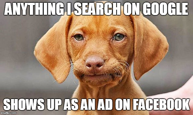 ANYTHING I SEARCH ON GOOGLE SHOWS UP AS AN AD ON FACEBOOK | image tagged in fed up dog | made w/ Imgflip meme maker