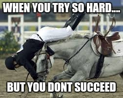 WHEN YOU TRY SO HARD.... BUT YOU DONT SUCCEED | image tagged in horse,falling,stupid,funny | made w/ Imgflip meme maker