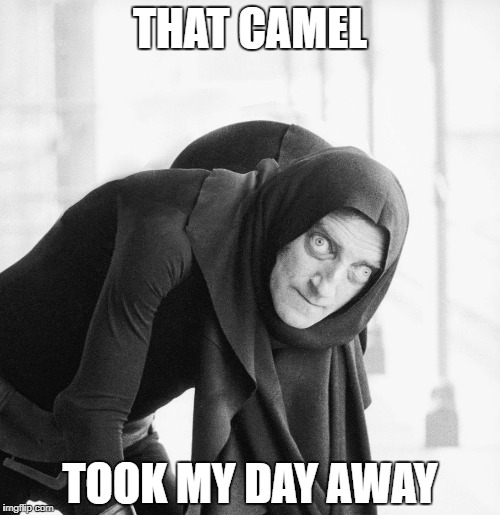 Hump Day | THAT CAMEL TOOK MY DAY AWAY | image tagged in hump day | made w/ Imgflip meme maker