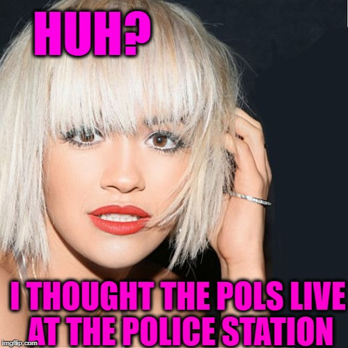 ditz | HUH? I THOUGHT THE POLS LIVE AT THE POLICE STATION | image tagged in ditz | made w/ Imgflip meme maker