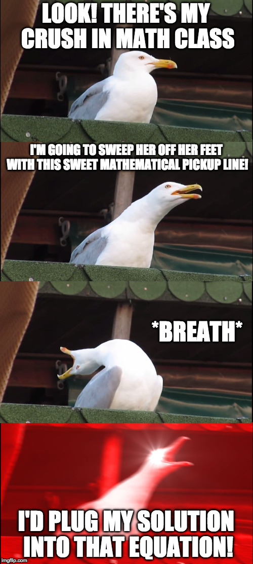 Oh look my Crush... | LOOK! THERE'S MY CRUSH IN MATH CLASS I'M GOING TO SWEEP HER OFF HER FEET WITH THIS SWEET MATHEMATICAL PICKUP LINE! *BREATH* I'D PLUG MY SOLU | image tagged in memes,inhaling seagull,math,pick up lines,crush,breathe | made w/ Imgflip meme maker