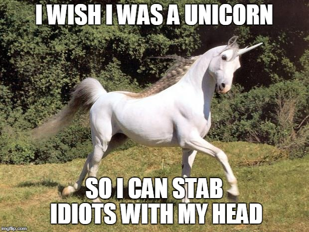 Unicorns | I WISH I WAS A UNICORN SO I CAN STAB IDIOTS WITH MY HEAD | image tagged in unicorns | made w/ Imgflip meme maker