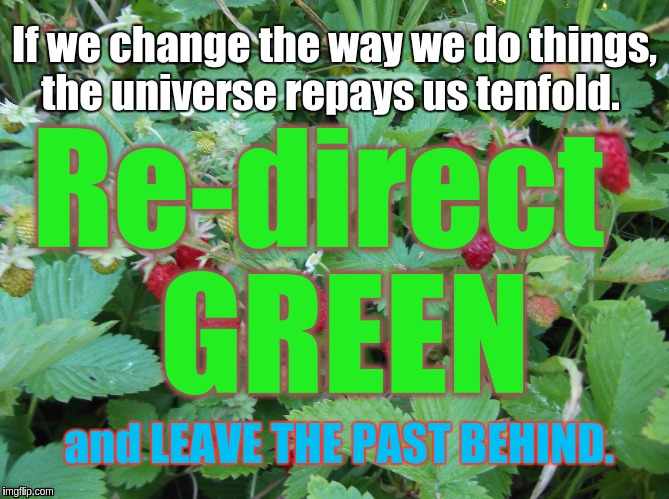 DNC Fraud | If we change the way we do things, the universe repays us tenfold. Re-direct  GREEN and LEAVE THE PAST BEHIND. | image tagged in green party | made w/ Imgflip meme maker