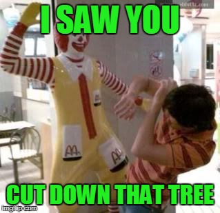 Ronald McDonald | I SAW YOU CUT DOWN THAT TREE | image tagged in ronald mcdonald | made w/ Imgflip meme maker