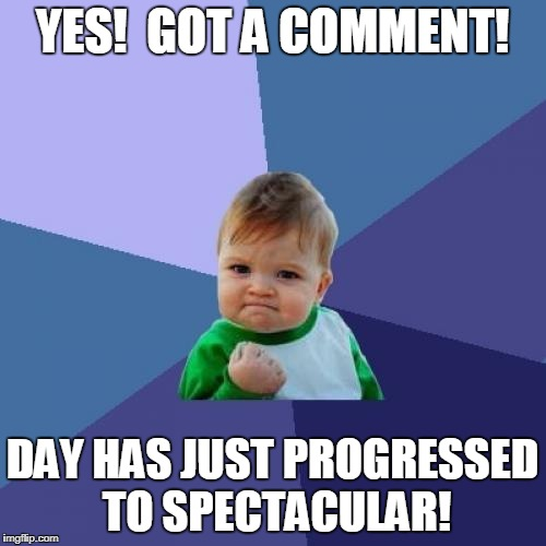 Success Kid Meme | YES!  GOT A COMMENT! DAY HAS JUST PROGRESSED TO SPECTACULAR! | image tagged in memes,success kid | made w/ Imgflip meme maker