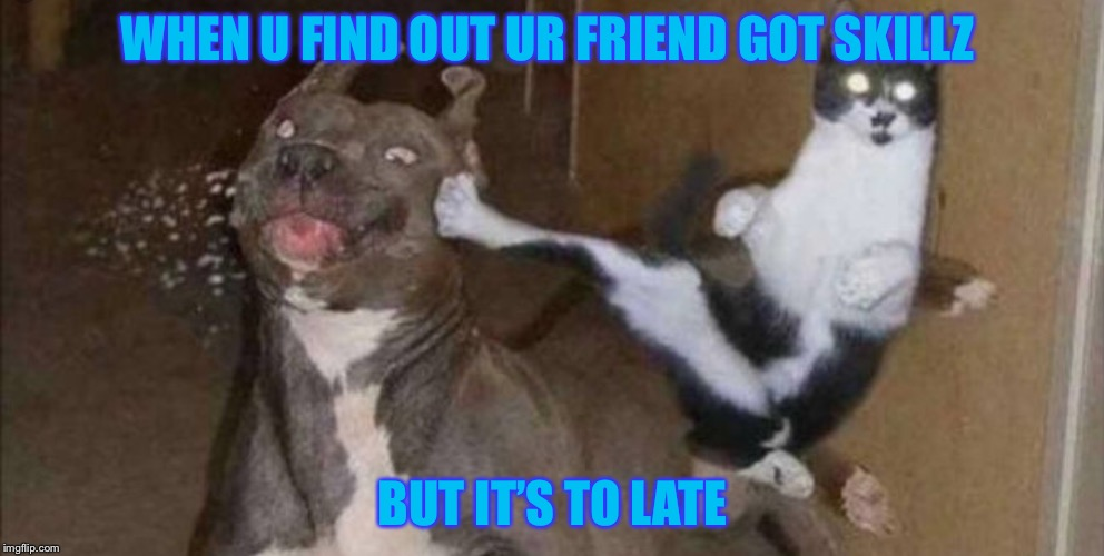 Karate Kitty | WHEN U FIND OUT UR FRIEND GOT SKILLZ BUT IT'S TO LATE | image tagged in karate kitty | made w/ Imgflip meme maker
