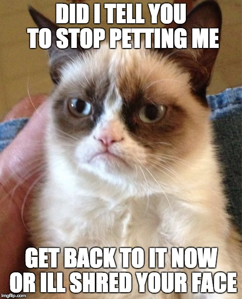 Grumpy Cat Meme | DID I TELL YOU TO STOP PETTING ME GET BACK TO IT NOW OR ILL SHRED YOUR FACE | image tagged in memes,grumpy cat | made w/ Imgflip meme maker
