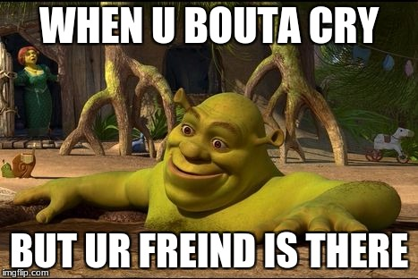 me every day | WHEN U BOUTA CRY BUT UR FREIND IS THERE | image tagged in shrek | made w/ Imgflip meme maker