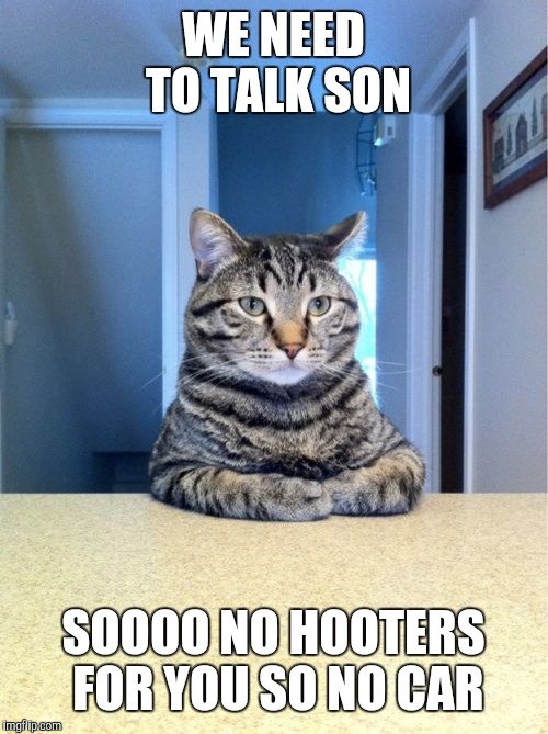 Take A Seat Cat Meme | WE NEED TO TALK SON SOOOO NO HOOTERS FOR YOU SO NO CAR | image tagged in memes,take a seat cat | made w/ Imgflip meme maker