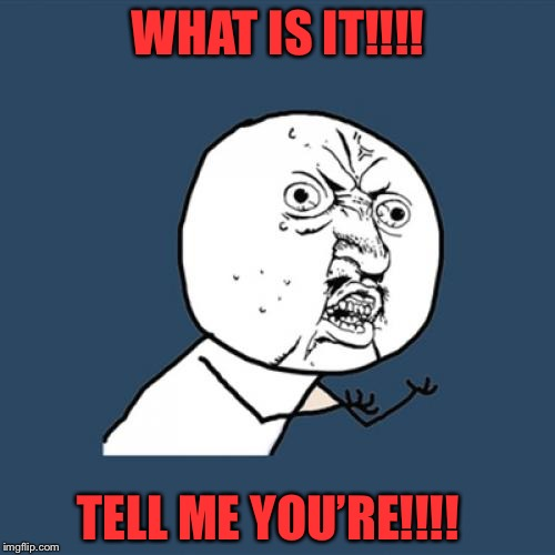 Y U No Meme | WHAT IS IT!!!! TELL ME YOU'RE!!!! | image tagged in memes,y u no | made w/ Imgflip meme maker